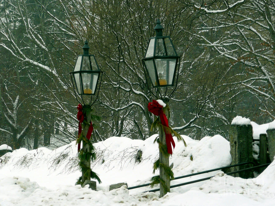 Lamppost Photograph - Seasons Greetings by Jayne Carney