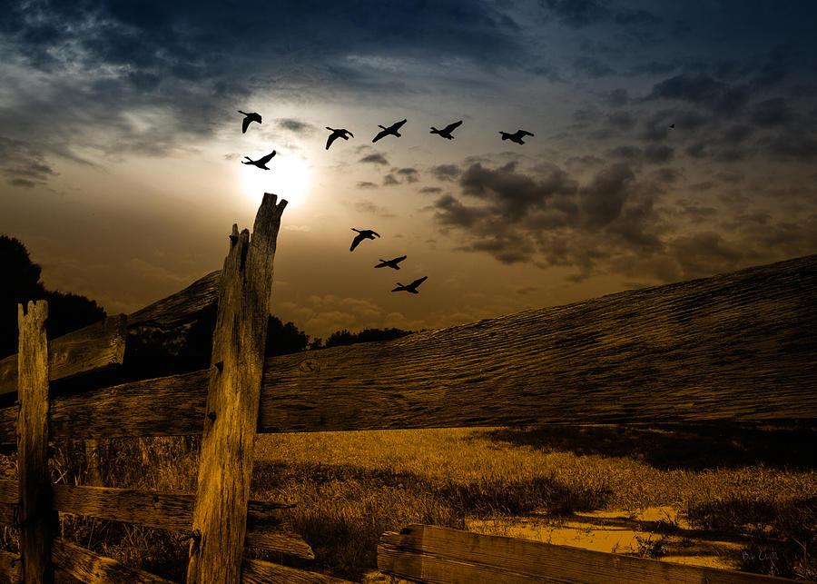 Autumn Photograph - Seasons Of Change by Bob Orsillo