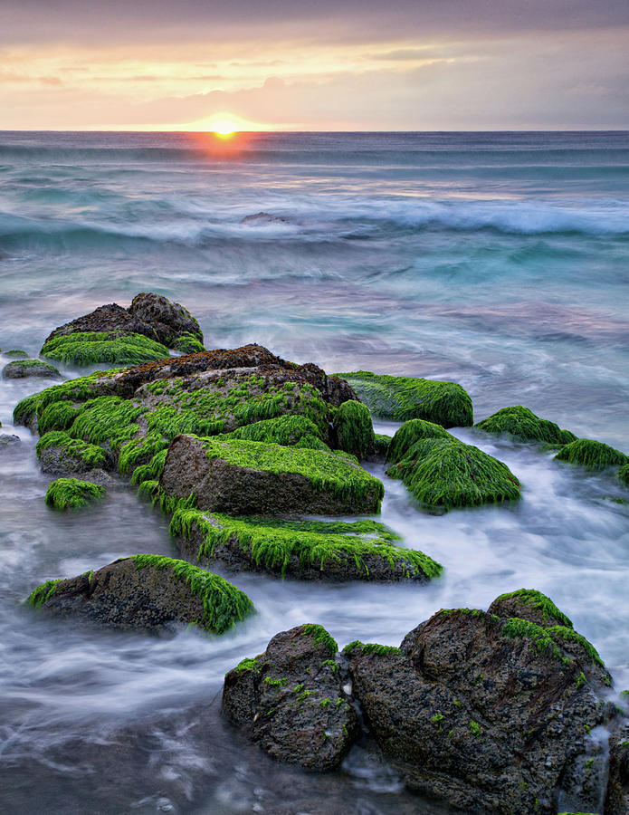 Seaweed, Granite And Blue Water Photograph by Peter G Knott