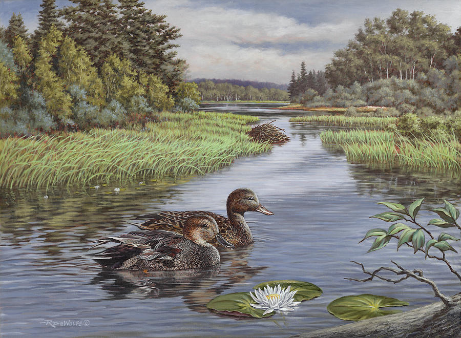 Widgeon Painting - Secluded Rendezvous by Richard De Wolfe