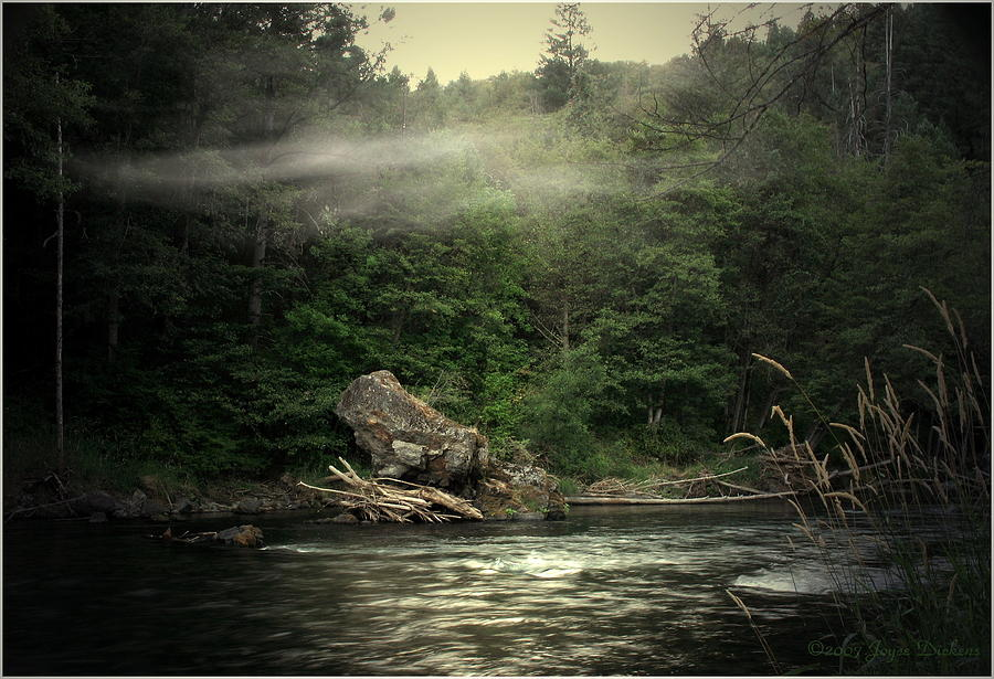 River Photograph - Seclusion On The Trinity by Joyce Dickens