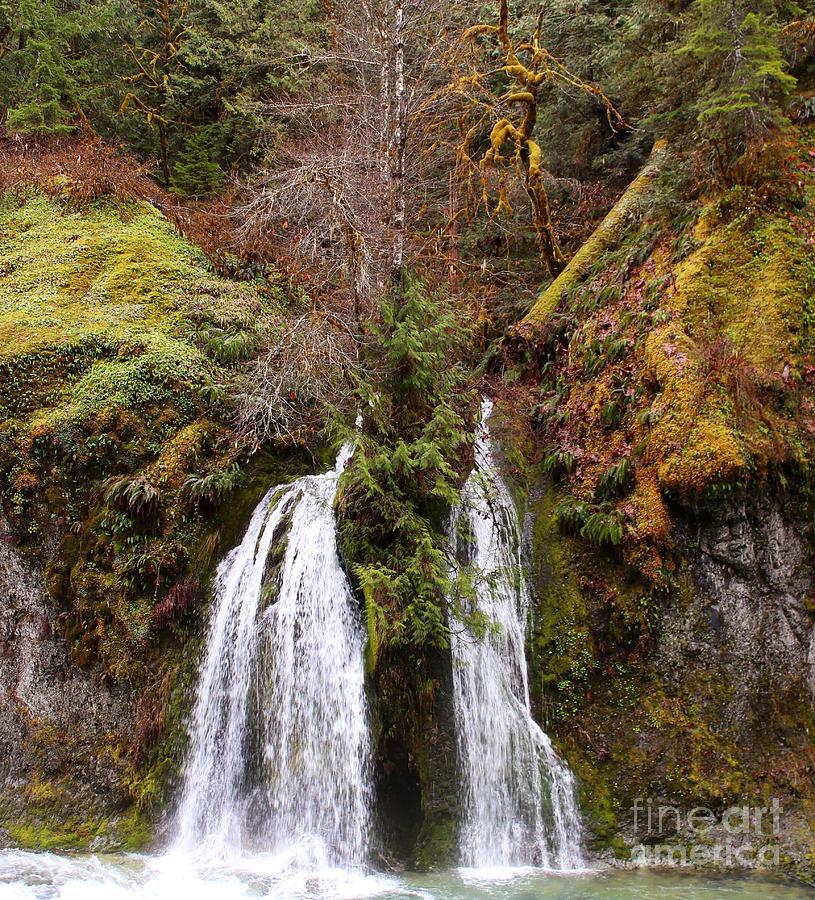 Landscape Photograph - Secret Cave Falls by Tim Rice