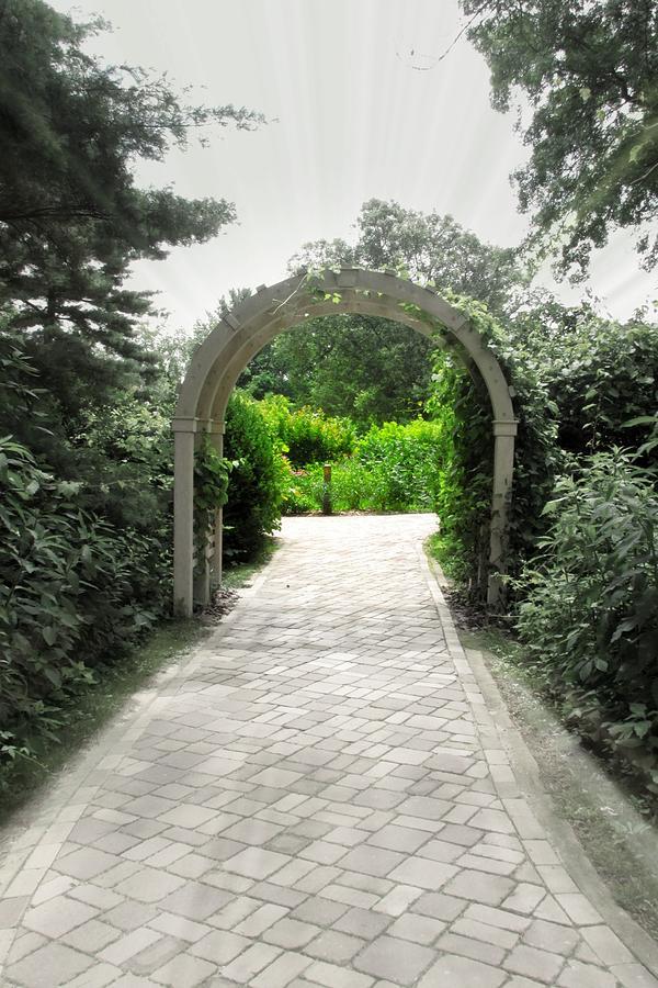 Garden Photograph - Secret Garden by Andrea Dale