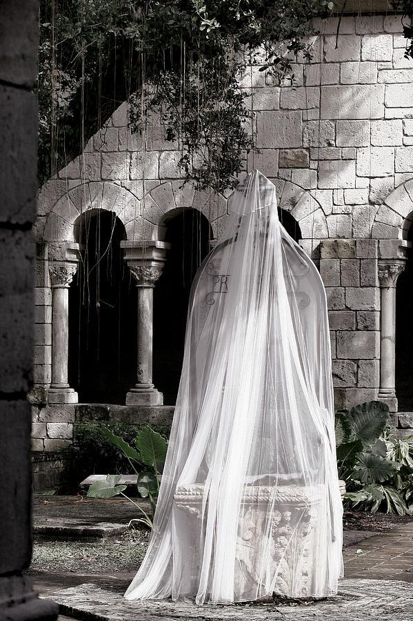 Veil Photograph - Secret Garden by Joanna Madloch