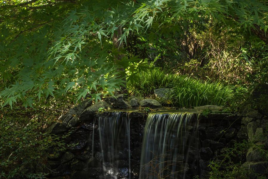 Gardens Photograph - Secret Garden by Julie Andel