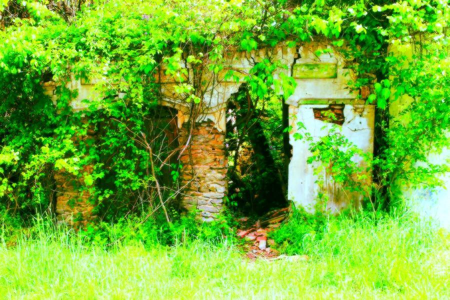 Ruin Photograph - Secret Garden by Sarah E Kohara