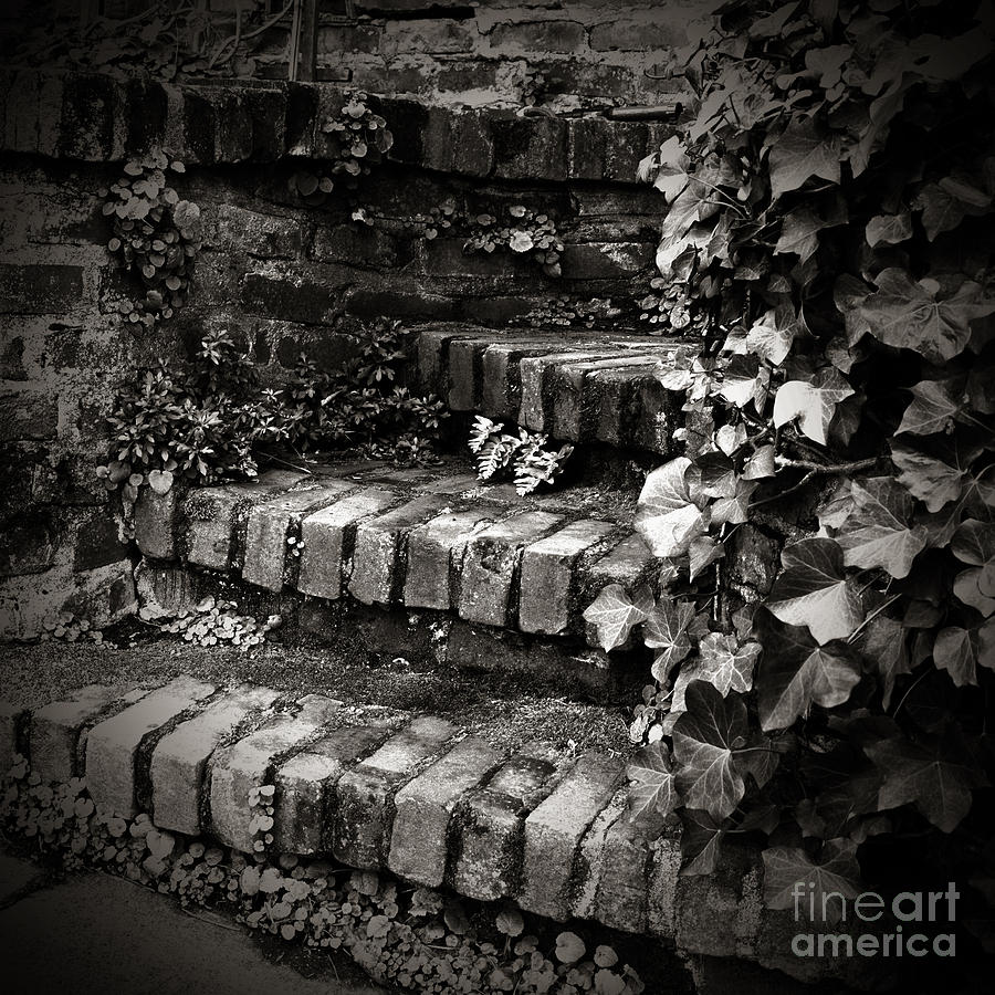 Stair Photograph - Secret Garden Stairs by Charmian Vistaunet