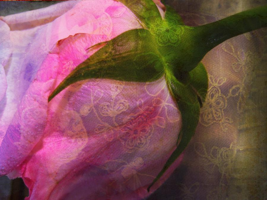 Floral Photograph - Secret Passion by Shirley Sirois
