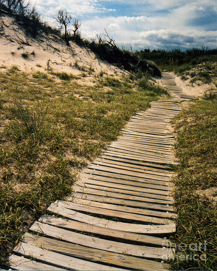 Dunes Photograph - Secret Path by Gerlinde Keating - Galleria GK Keating Associates Inc