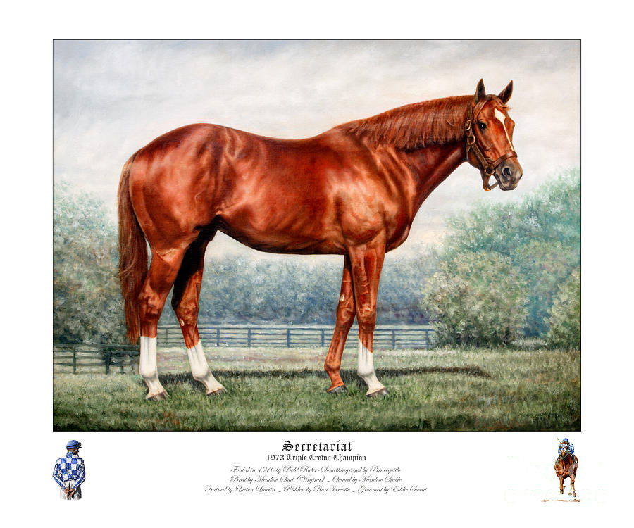 Secretariat Painting - Secretariat Triple Crown Champion by Thomas Allen Pauly