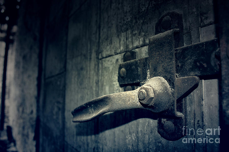 Door Photograph - Secrets Within by Trish Mistric