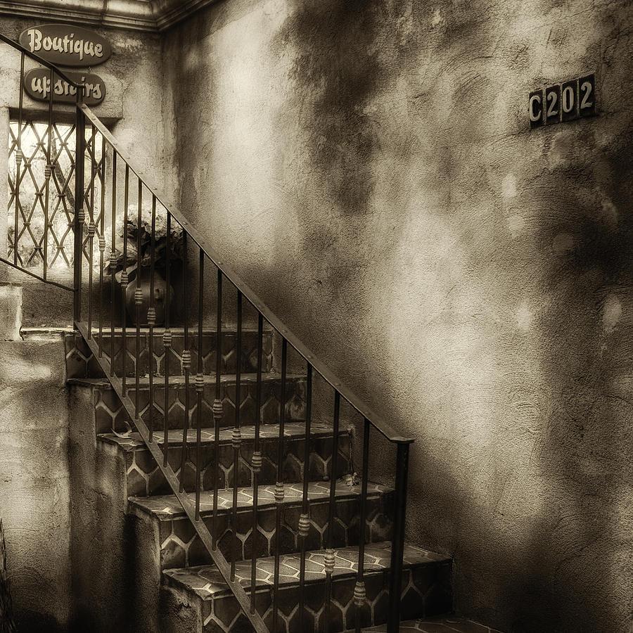 Sedona Stairway Sepia by Ron White