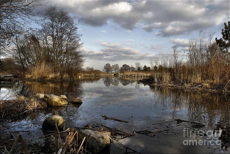 Landscape Photograph - Seduction by Peter Lessey
