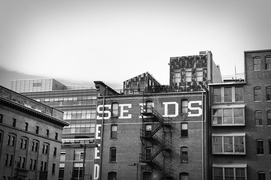 Black And White Photograph - Seeds Building Two by Todd Hartzo