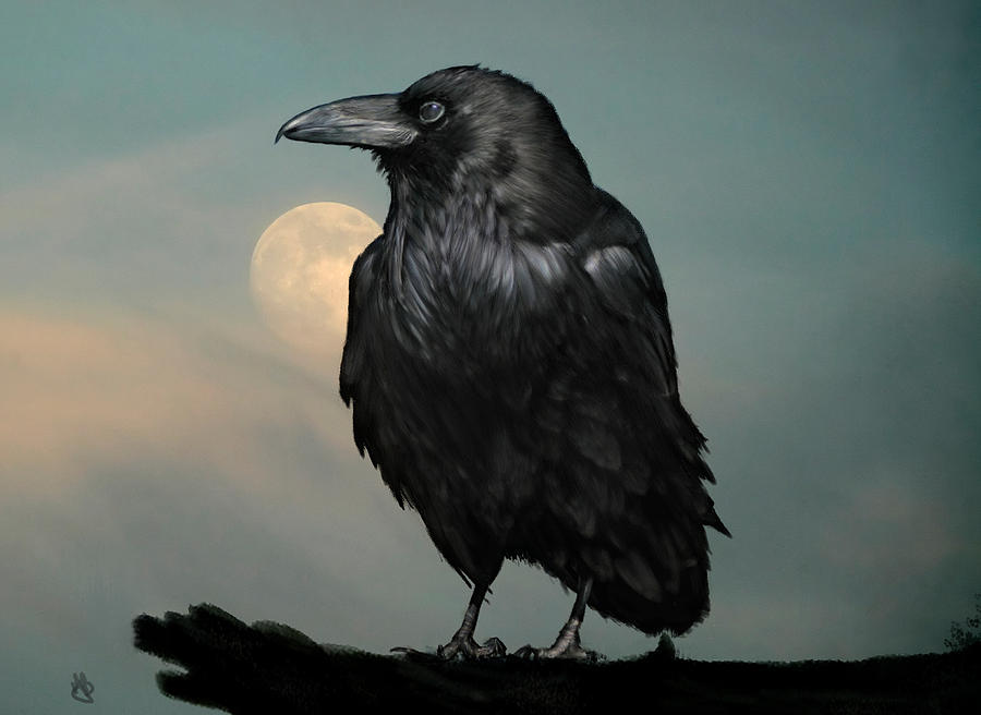 Raven Digital Art - Seeking Poe by Hazel Billingsley