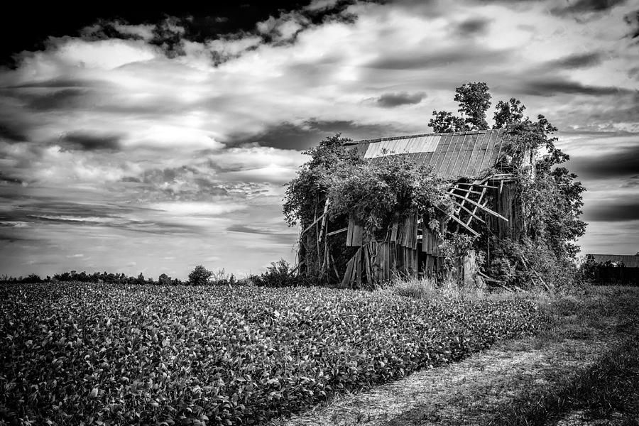 Fineart Photograph - Seen Better Days by Jeff Burton