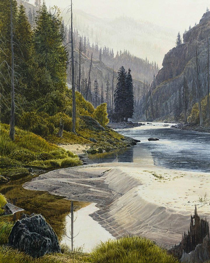 Wild River Painting - Selway River by Steve Spencer