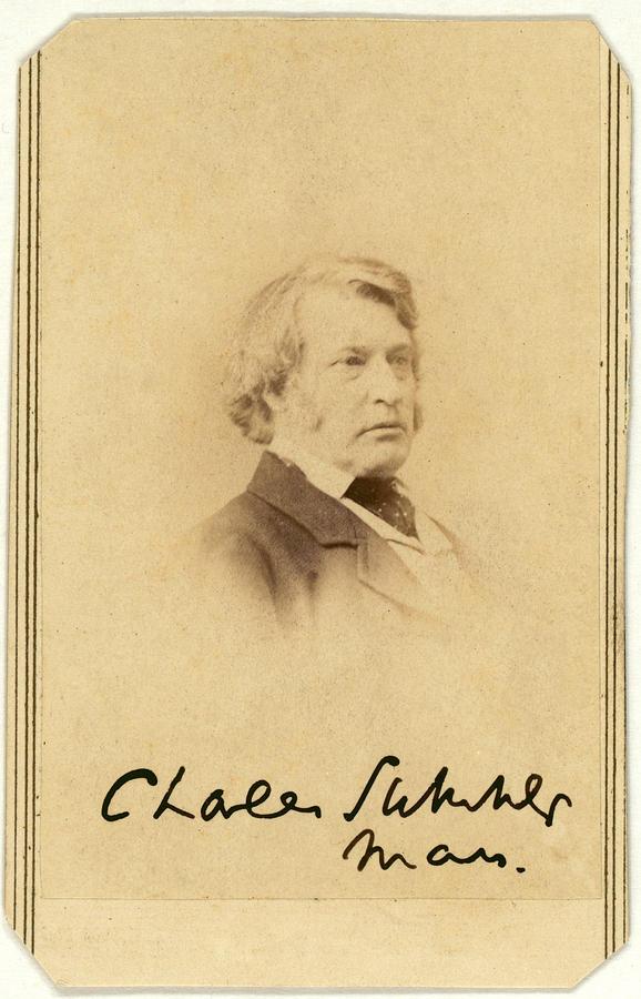 Senator Charles Sumner Carte De Visite Photograph By Everett