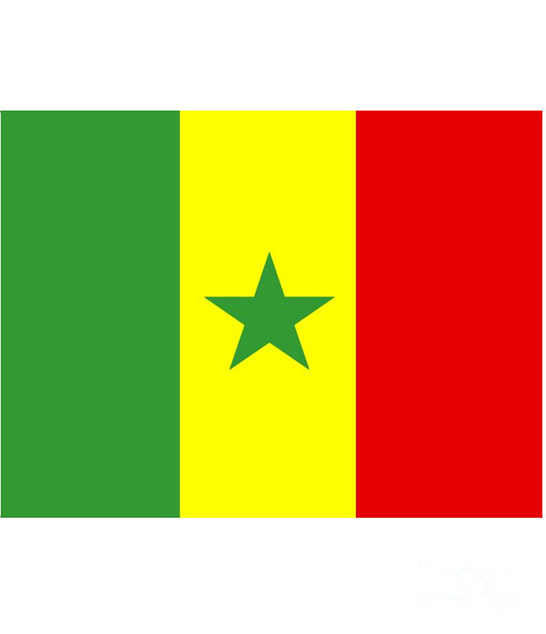 Senegal Digital Art - Senegal Flag by Frederick Holiday