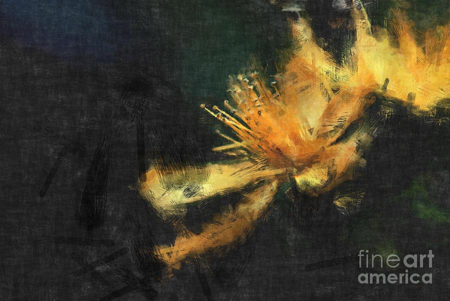 Flowers Photograph - Sensitivity by Aimelle
