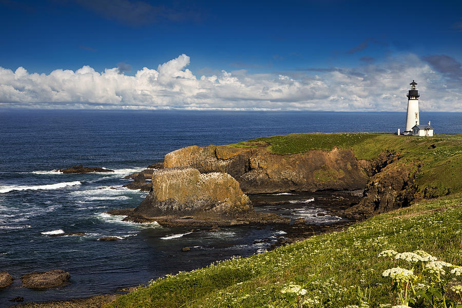 Sentinel on the Pacific Coast by Andrew Soundarajan