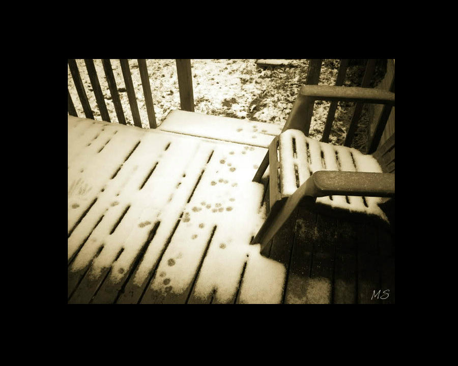 Sepia Photograph - Sepia - Nature Paws In The Snow by Absinthe Art By Michelle LeAnn Scott