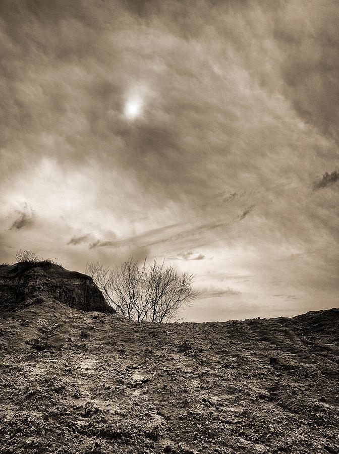 Sepia Skies Photograph