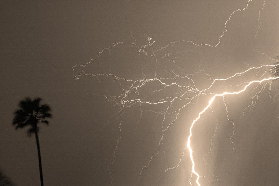 Lightning Photograph - Sepia Tropical Thunderstorm Night  by James BO  Insogna