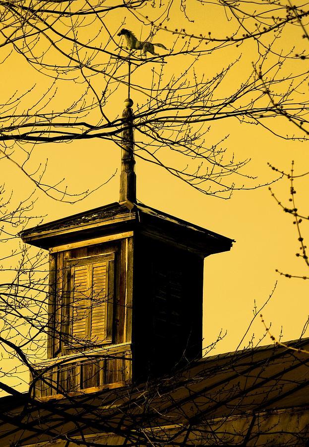 Brown Photograph - Sepiatone Cupola by Debbie Finley