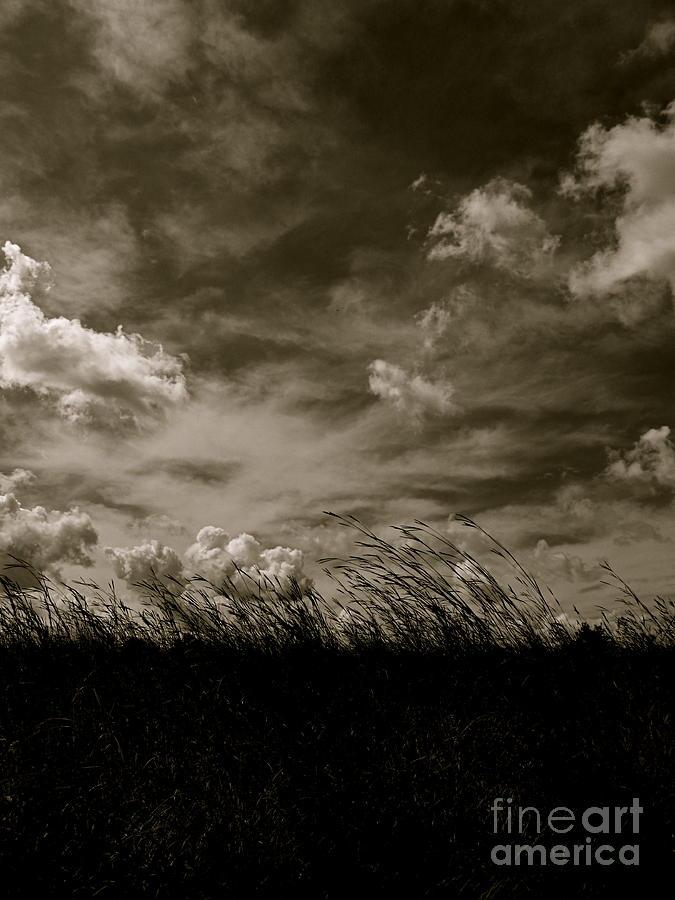Monochrome Photograph - September Sky by Tim Good