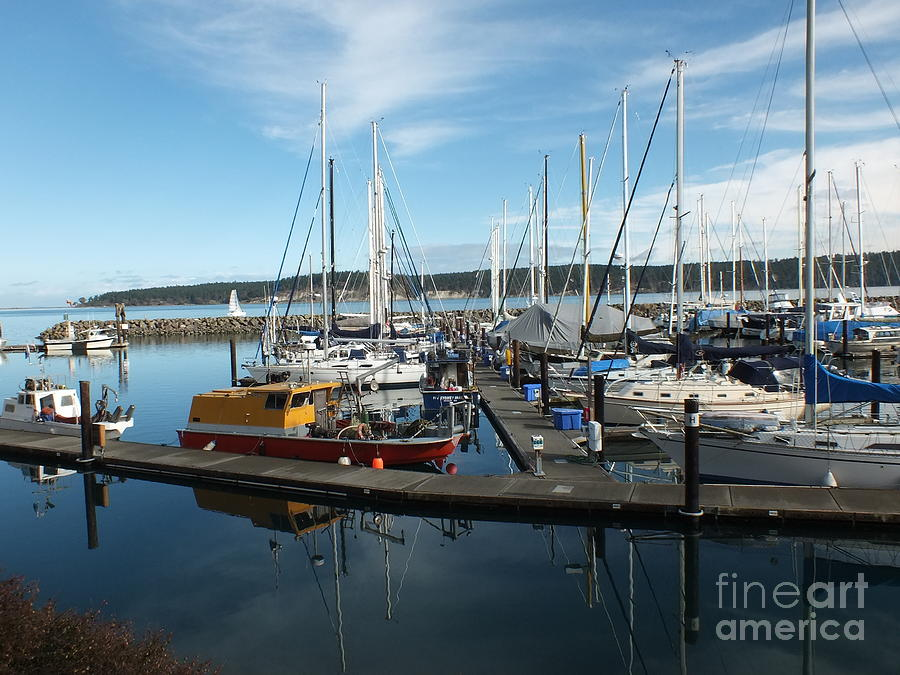 John Wayne Marina Photograph - Sequim Bay  by Heike Ward