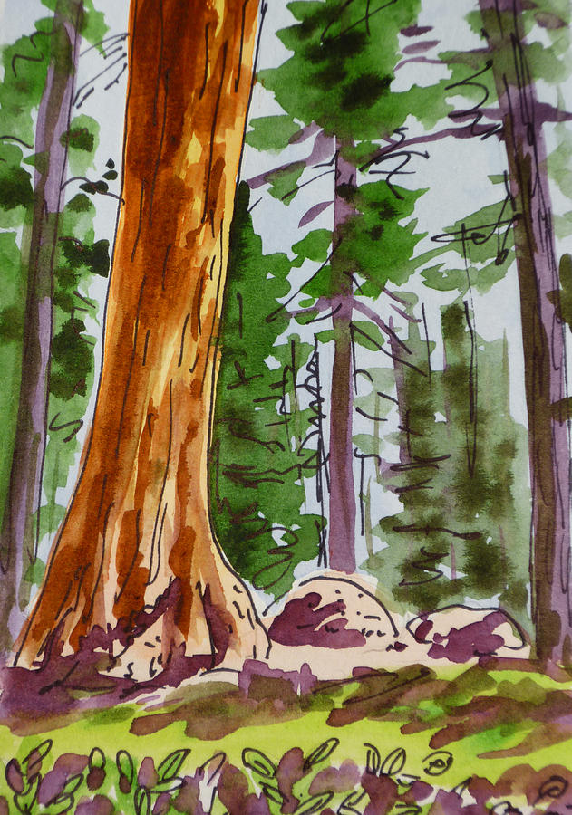 Sketchbook Painting - Sequoia Park - California Sketchbook Project  by Irina Sztukowski