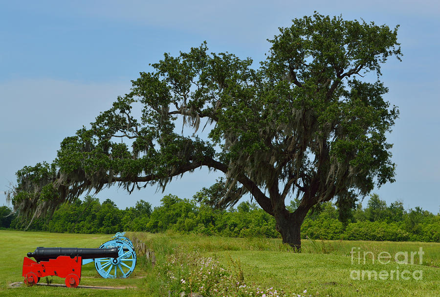 Battle Of New Orleans Photograph - Serenity by Alys Caviness-Gober