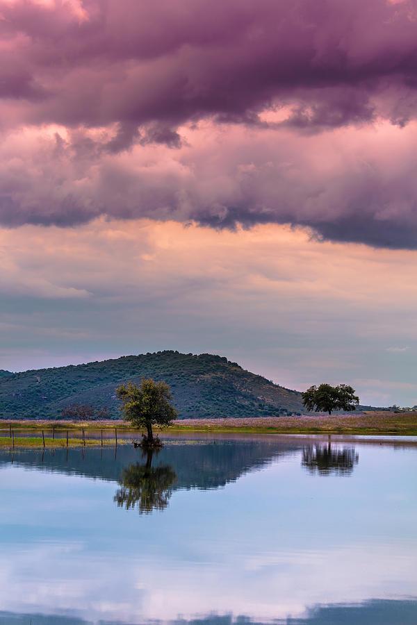 Peace Photograph - Serenity And Fullness by Edgar Laureano