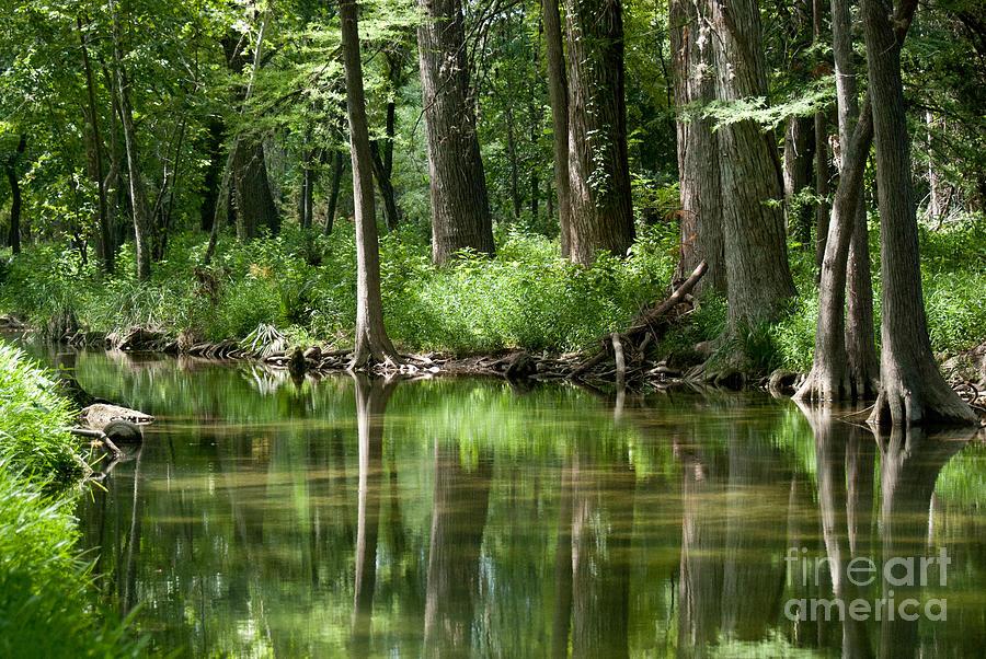 Landscape Photograph - Serenity by Barbara Shallue