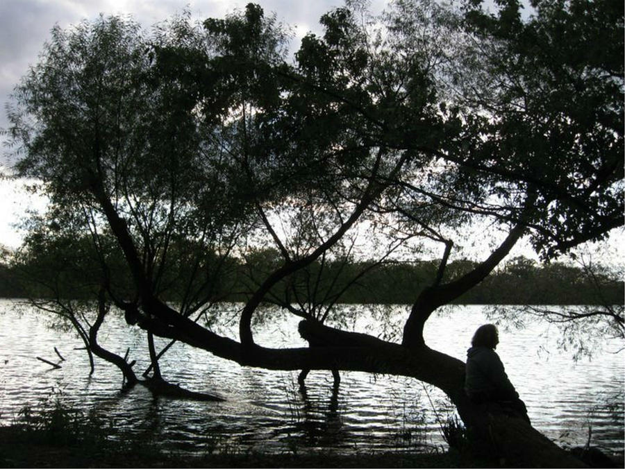 Richmond Photograph - Serenity On The River by Digital Art Cafe