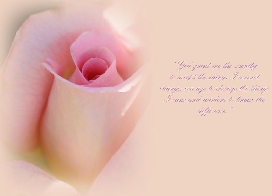 Roses Photograph - Serenity Prayer by The Art Of Marilyn Ridoutt-Greene
