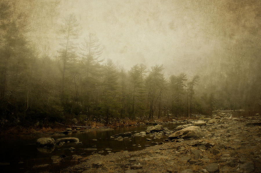 River Photograph - Set In Fog by Kathy Jennings