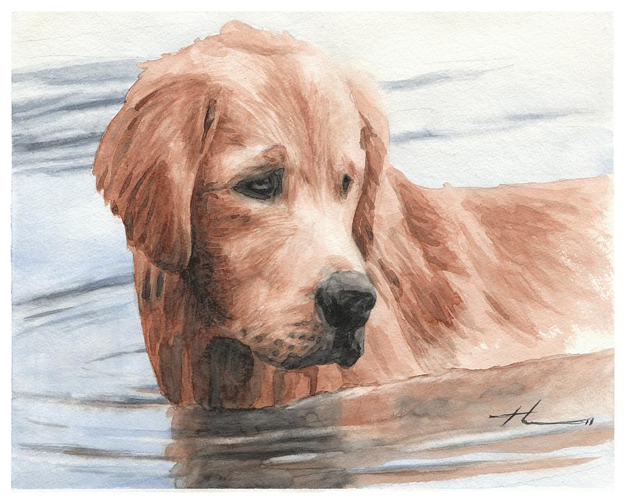 Setter Dog In Water Watercolor Portrait Drawing by Mike Theuer