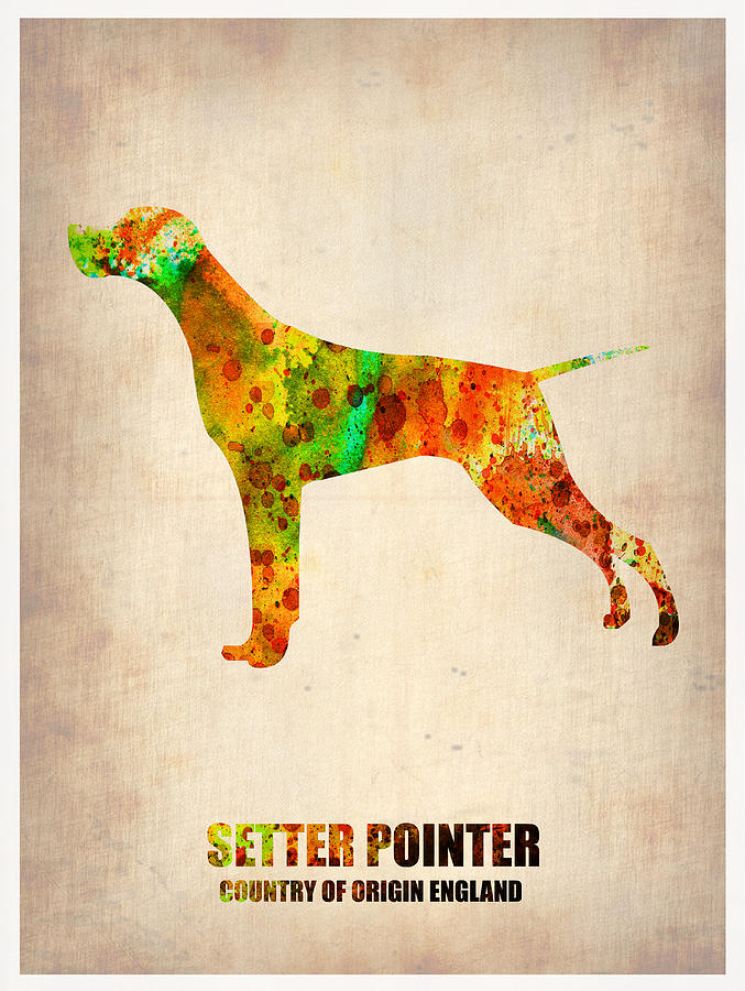 Pet Painting - Setter Pointer Poster by Naxart Studio