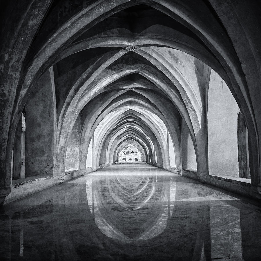 Joan Carroll Photograph - Baths At Alcazar Seville Bw by Joan Carroll