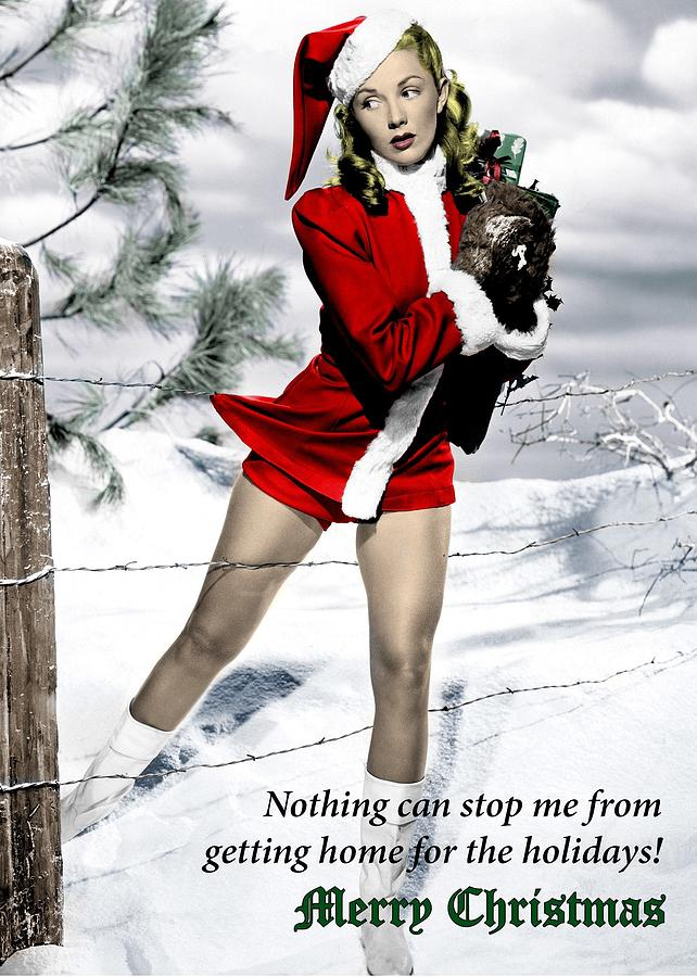 Merry christmas sexy santa helpers can