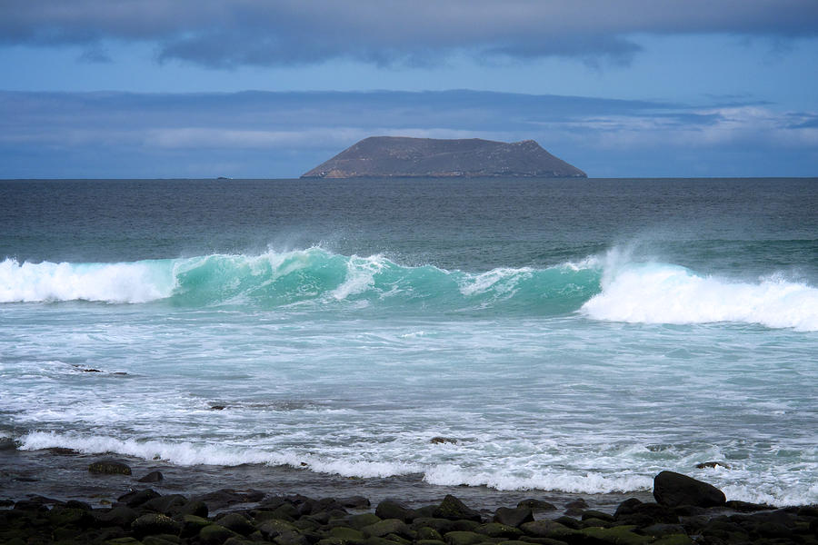 Galapagos Islands Photograph - Seymour Surf by David Beebe