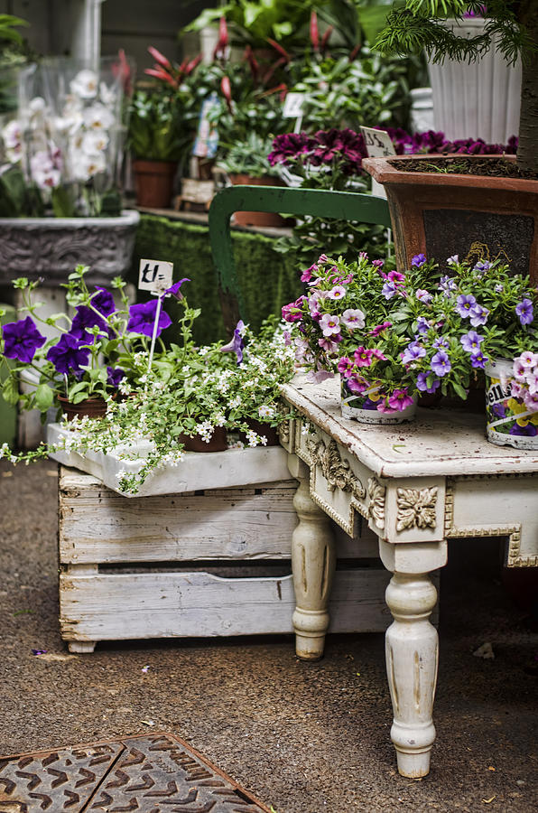 shabby chic flower shop photograph by heather applegate. Black Bedroom Furniture Sets. Home Design Ideas