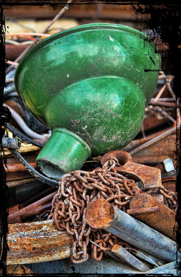 Shade Photograph - Shade And Chain by Sylvia Thornton