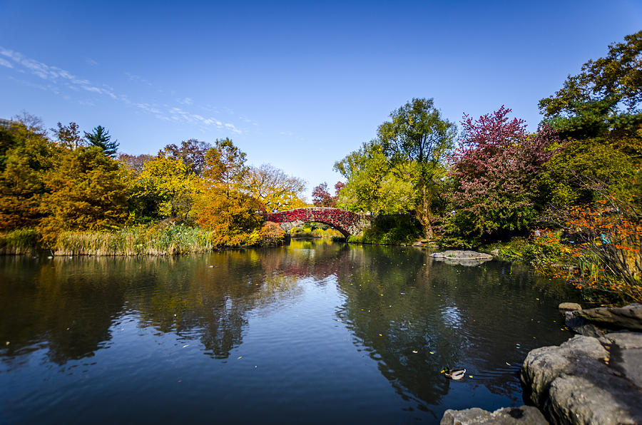 Nyc Photograph - Shades Of Fall by Johnny Lam