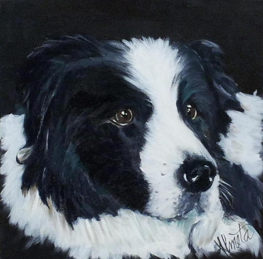Border Collie Painting - Shadow by Almeta LENNON