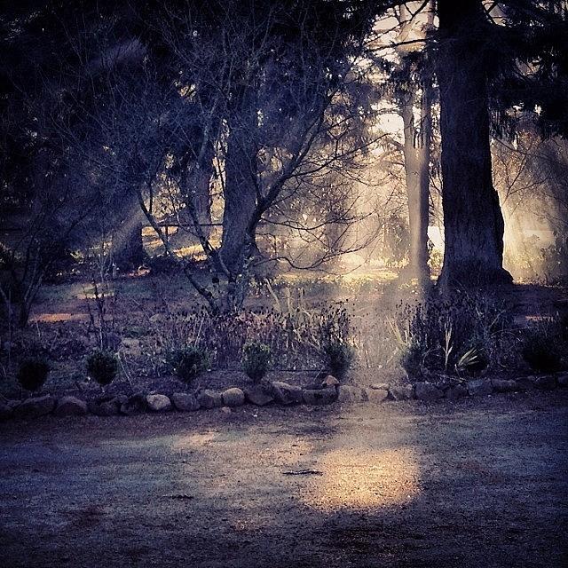 Shadow And Light Photograph by Blenda Studio