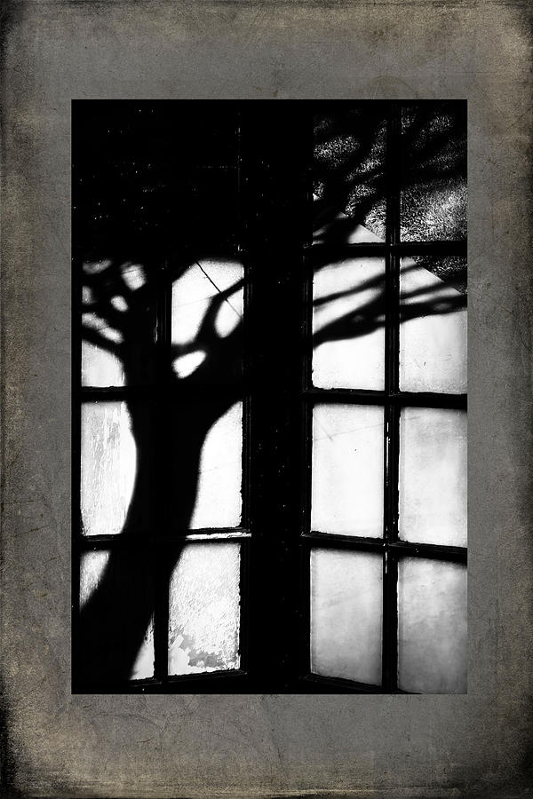 Photograph - Shadow by Bobbi Feasel
