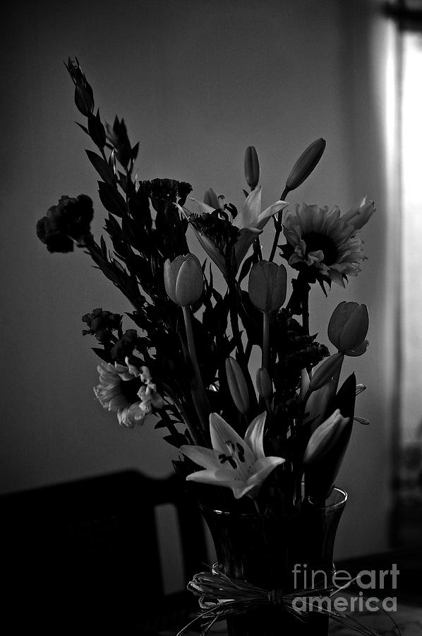 Shadow Light Flowers In Vase Photograph